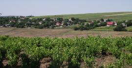singerei_moldavie