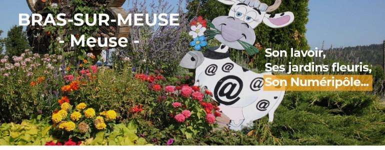 Carte postale : Bras-sur-Meuse