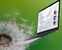 laptop_web